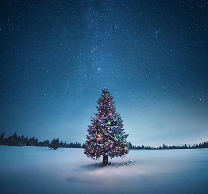 星空「クリスマスツリー」:スマホ壁紙(5)