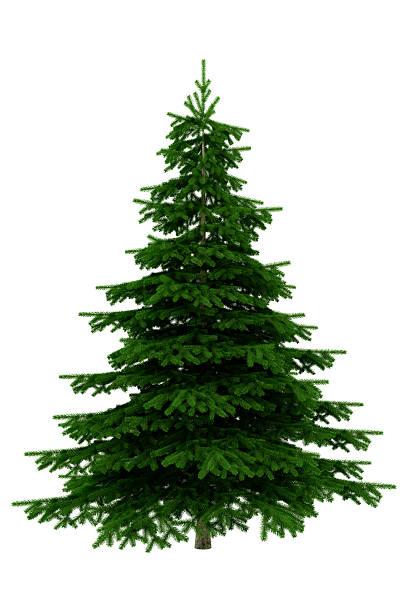 クリスマスツリーの白の背景-XXXL:スマホ壁紙(壁紙.com)
