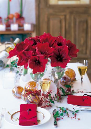Flower Arrangement「Christmas table with red amaryllis flowers」:スマホ壁紙(4)