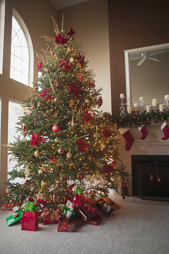 Tradition「Christmas tree and decorations in living room」:スマホ壁紙(6)