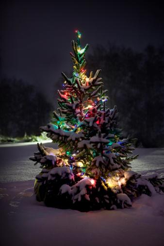 雪が降る「夜のクリスマスツリー」:スマホ壁紙(5)