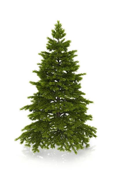 クリスマスクリスマスツリー:スマホ壁紙(壁紙.com)