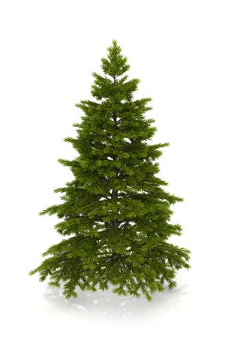 Clip Art「christmas tree」:スマホ壁紙(19)
