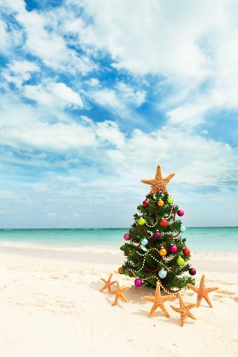 Mayan Riviera「Christmas Tree on Tropical Caribbean Beach in Winter Holiday Vacation」:スマホ壁紙(12)