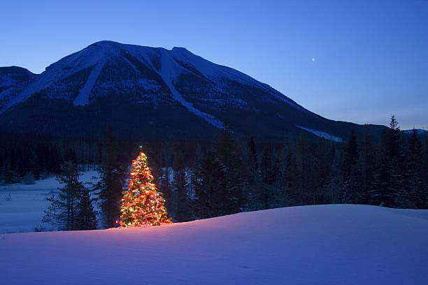 Christmas tree in mountains:スマホ壁紙(壁紙.com)