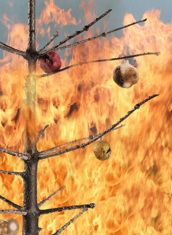 Burnt「Christmas tree on fire」:スマホ壁紙(1)