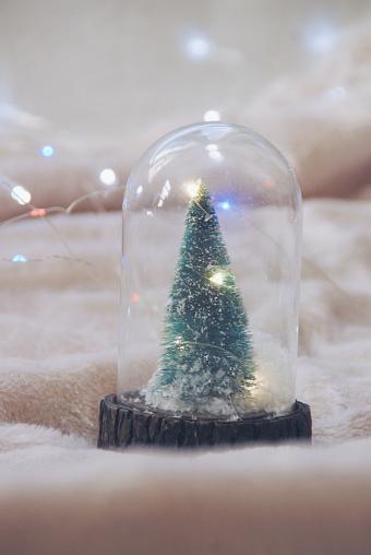 スノードーム「Christmas tree snow globe」:スマホ壁紙(9)