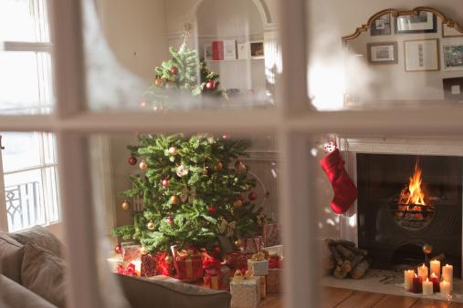 Anticipation「Christmas tree in living room behind window」:スマホ壁紙(17)