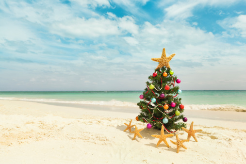Mayan Riviera「Christmas tree on sandy Caribbean beach」:スマホ壁紙(2)