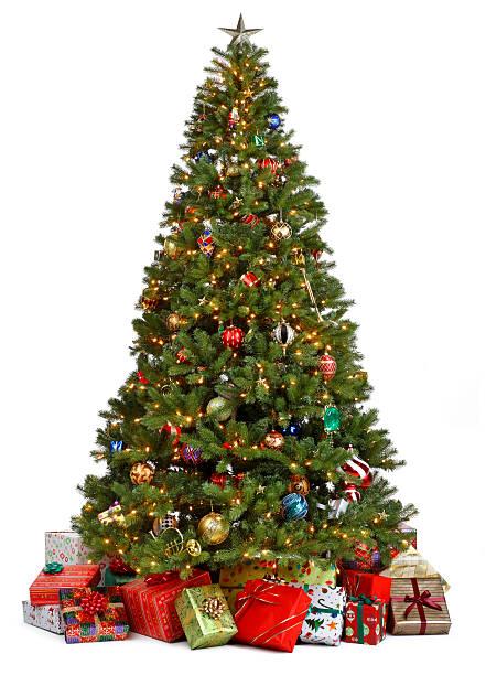 クリスマスツリーに囲まれ、背景は白:スマホ壁紙(壁紙.com)