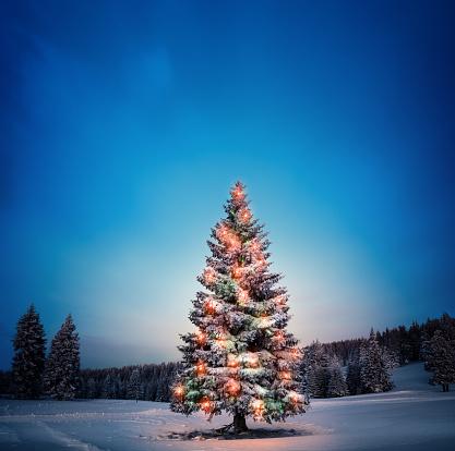 December「Christmas Tree」:スマホ壁紙(19)