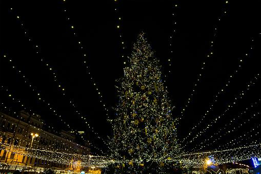 Ukraine「Christmas tree and Christmas lights, Kiev, Ukraine」:スマホ壁紙(7)