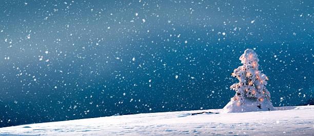 Christmas Tree With Lights And Snow - Panoramic:スマホ壁紙(壁紙.com)