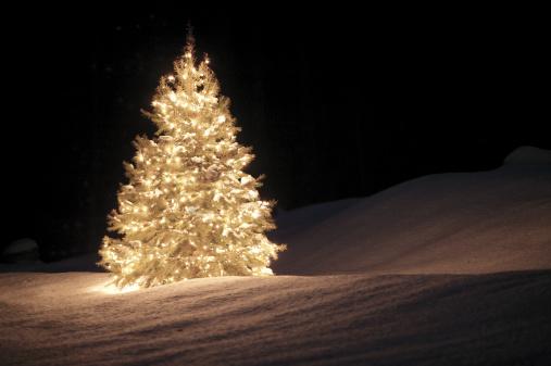 Christmas Lights「Christmas tree with lights」:スマホ壁紙(19)