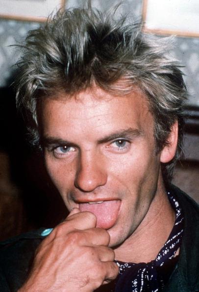 Singer「Sting」:写真・画像(11)[壁紙.com]