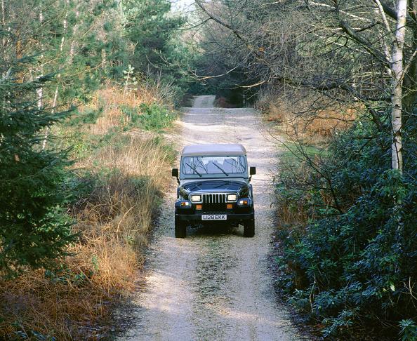 Motor Vehicle「1994 Jeep Wrangler」:写真・画像(19)[壁紙.com]