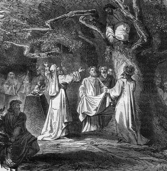 "Tree「Gathering of mistletoe among the Druids in Gaul: Druid climbed the oak, a weapon of gold sickle and cut the mistletoe, burning taken from the book ""Paris through the centuries, Tome1"" (1878)」:写真・画像(8)[壁紙.com]"