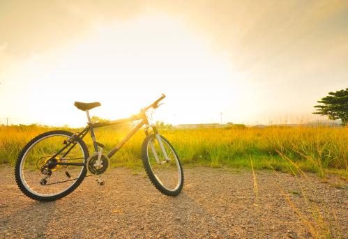 自転車・バイク「自転車、太陽の光のフィールド」:スマホ壁紙(14)