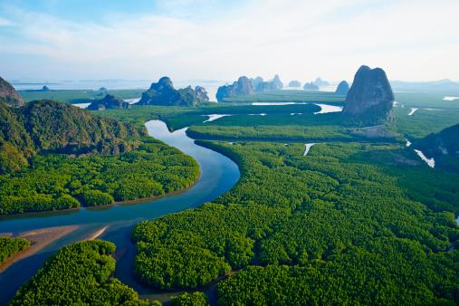 River「Thailand, Ao Phang Nga national parc」:スマホ壁紙(7)