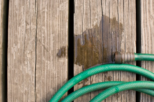 Hose「A hose」:スマホ壁紙(19)