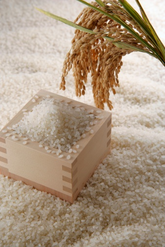 Masu「Uncooked rice and ear of rice」:スマホ壁紙(10)