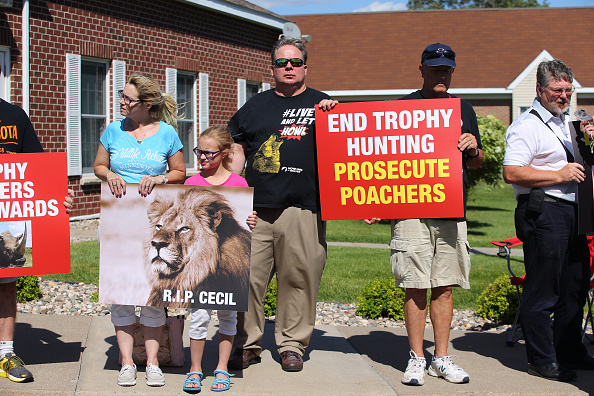 Big Cat「Memorial And Protest Held At Office Of Minnesota Dentist That Killed Famed Lion In Zimbabwe」:写真・画像(15)[壁紙.com]