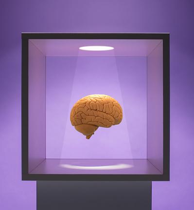 Intelligence「Spot lit Human brain in box」:スマホ壁紙(4)