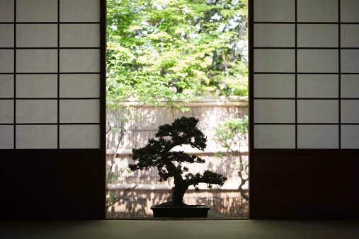 Japan「盆栽」:スマホ壁紙(16)