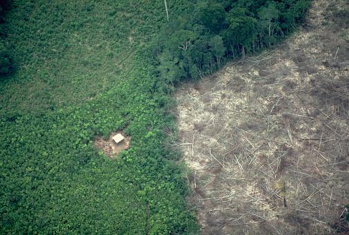Central America「Deforestation in Panama」:スマホ壁紙(5)