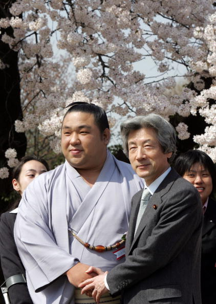 千代大海「Japanese Prime Minister Junichiro Koizumi Attends Cherry Blossom Event」:写真・画像(1)[壁紙.com]