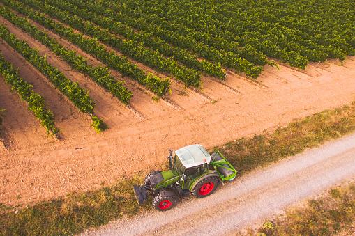 Grove「Tractor on vineyards' field」:スマホ壁紙(8)