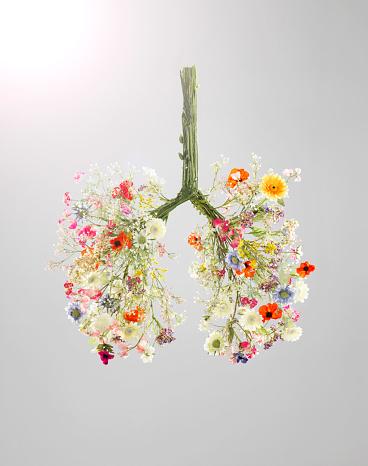 Springtime「Lungs made from flowers」:スマホ壁紙(18)