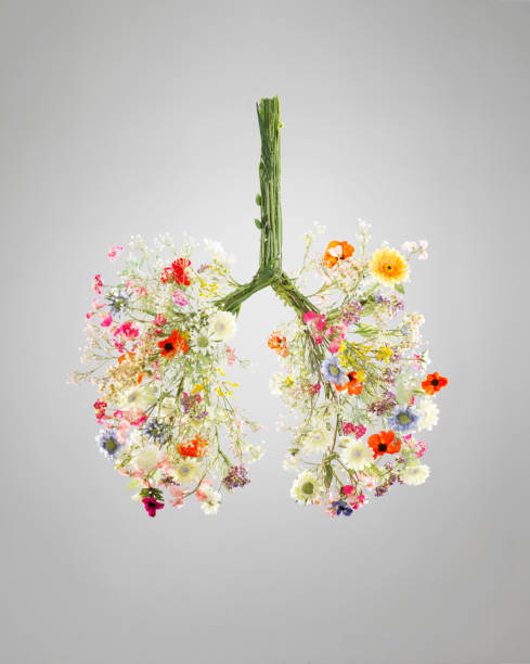 Lungs made from flowers:スマホ壁紙(壁紙.com)