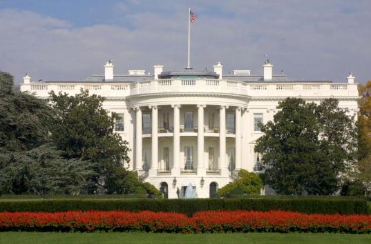 Outdoors「Shots Fired Outside White House」:写真・画像(1)[壁紙.com]
