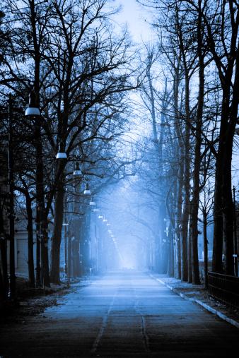 Avenue「Foggy boulevard」:スマホ壁紙(16)