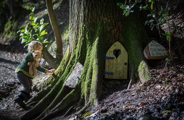 Fairy「Clampdown On Fairy Doors Appearing In Somerset Woods」:写真・画像(3)[壁紙.com]