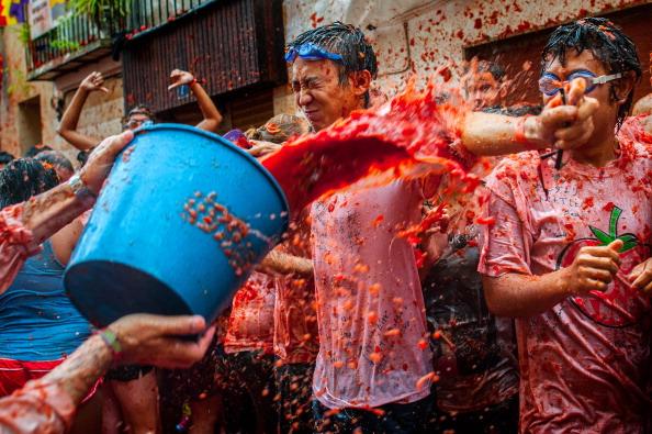 Tomato「The World's Biggest Tomato Fight At Tomatina Festival 2013」:写真・画像(14)[壁紙.com]