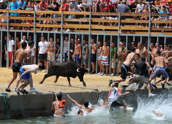 Costa Blanca「Revellers Chase Bulls Into The Sea During The Bous A La Mar Festival」:写真・画像(13)[壁紙.com]