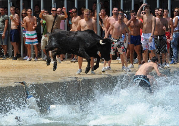Costa Blanca「Revellers Chase Bulls Into The Sea During The Bous A La Mar Festival」:写真・画像(12)[壁紙.com]