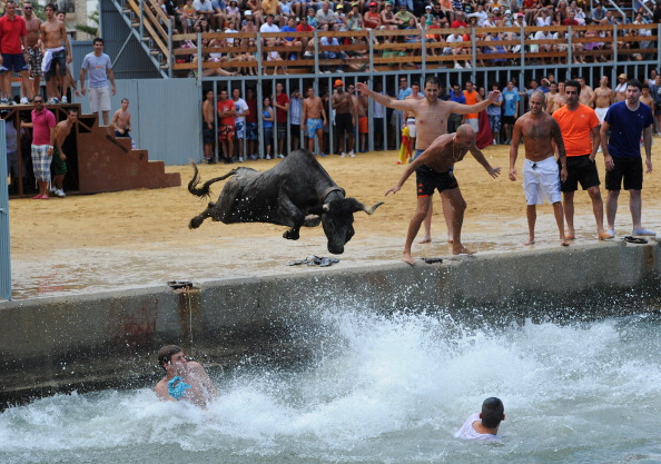 Costa Blanca「Revellers Chase Bulls Into The Sea During The Bous A La Mar Festival」:写真・画像(14)[壁紙.com]