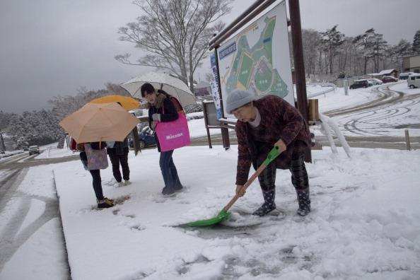 School Bus「Japan Prepares To Mark One Year Anniversary Of Earthquake And Tsunami」:写真・画像(15)[壁紙.com]
