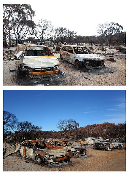 Composite Image「Kangaroo Island Six Weeks On Following Devastating Bushfires」:写真・画像(6)[壁紙.com]
