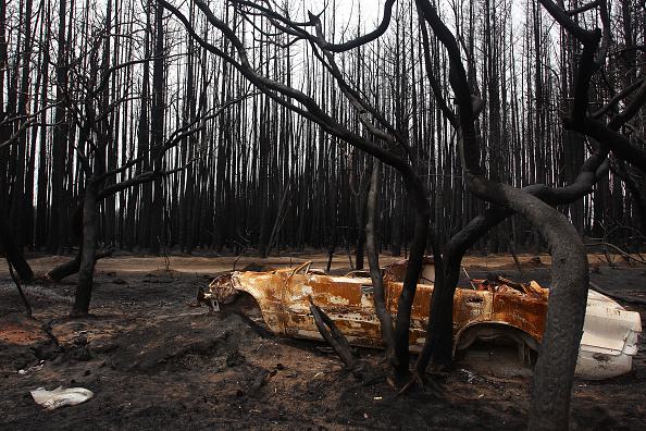 Kangaroo Island「Kangaroo Island Bushfire Threat Increases As Residents Are Told To Evacuate」:写真・画像(15)[壁紙.com]