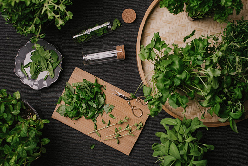 Herbal Medicine「Herb leaves fresh picked herbs saved and dried」:スマホ壁紙(17)
