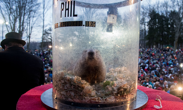 お祝い「Annual Winter Tradition Of Groundhog Day Celebrated In Punxsutawney, Pennsylvania」:写真・画像(13)[壁紙.com]