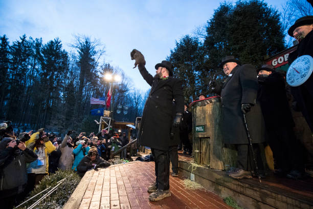 "Brett Carlsen「""Punxsutawney Phil"" Makes Annual Winter Prediction On Groundhog Day」:写真・画像(10)[壁紙.com]"