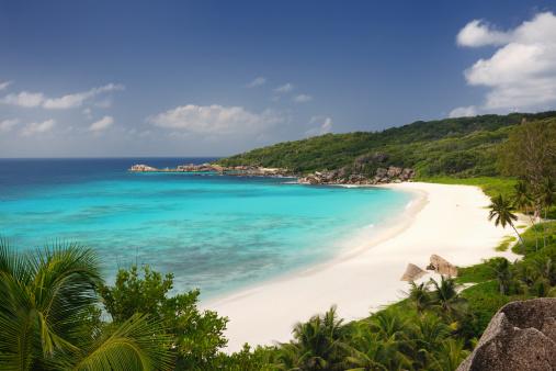Island「Secluded Tropical Bay」:スマホ壁紙(18)