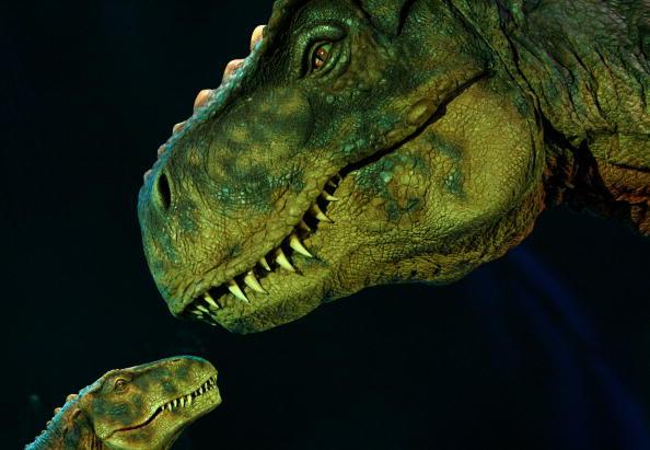 Dinosaur「Wetten dass...? New Season With Michelle Hunziker And Thomas Gottschalk」:写真・画像(11)[壁紙.com]