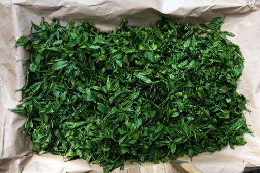 Steamed「green tea leaves」:スマホ壁紙(12)