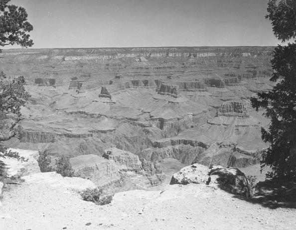 Arizona「Grand Canyon」:写真・画像(18)[壁紙.com]